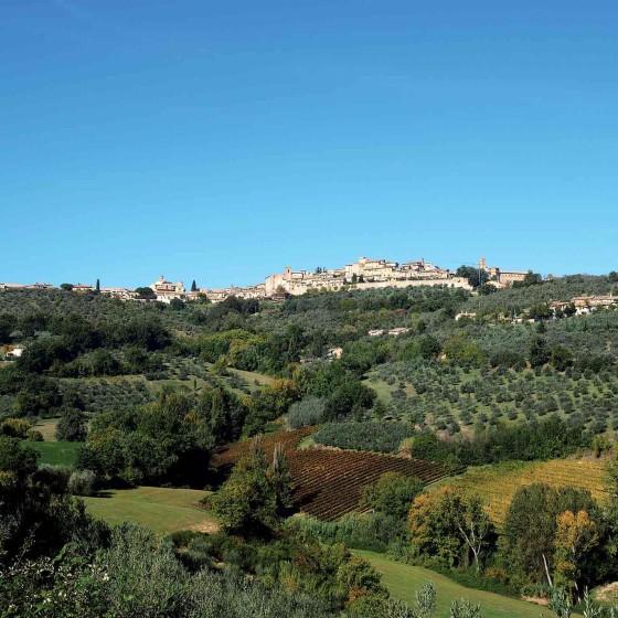 Panorama di Montefalco