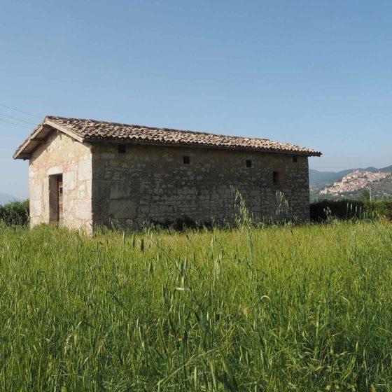 Trevi, San Lorenzo, chiesa di Sant'Apollinare