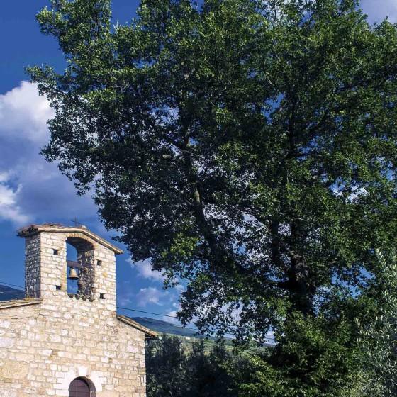 Roverella – Trevi, Santa Maria in Valle, via Collecchio, chiesa di Sant'Andrea
