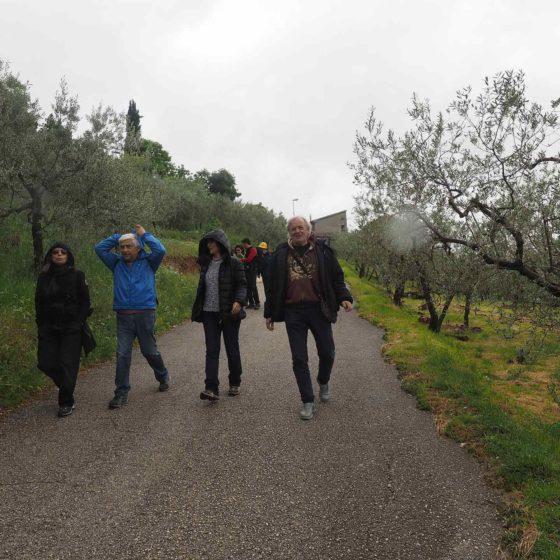 I sentieri di mezzo: presentazione, Trevi, Sala Consiliare, 1 maggio 2016. La passeggiata nel paesaggio olivetato storico