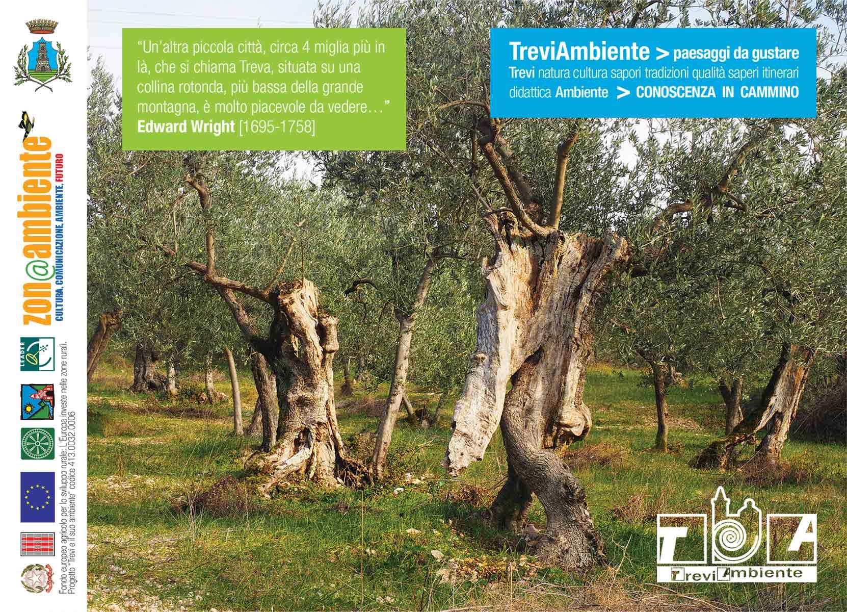 Brochure-TreviAmbiente-2015-web